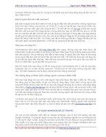 Hướng dẫn cách kiếm tiền trên Internet cùng John Chow phần 8 potx