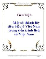 Tiểu luận: Một số thành lũy tiêu biểu ở Việt Nam trong tiến trình lịch sử Việt Nam potx