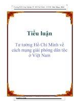 Tiểu luận: Tư tưởng Hồ Chí Minh về cách mạng giải phóng dân tộc ở Việt Nam doc