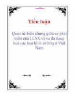 Tiểu luận: Quan hệ biện chứng giữa sự phát triển của LLSX và sự đa dạng hoá các loại hình sở hữu ở Việt Nam potx