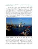 Công nghệ chống ăn mòn kết cấu thép các công trình biển ở Nhật Bản docx