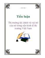 Tiểu luận: Thị trường tài chính và vai trò của nó trong nền kinh tế thị trường Việt Nam ppt