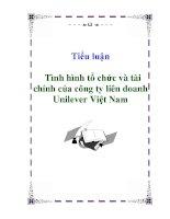 Tiểu luận: Tình hình tổ chức và tài chính của công ty liên doanh Unilever Việt Nam pdf