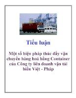 Tiểu luận: Một số biện pháp thúc đẩy vận chuyển hàng hoá bằng Container của Công ty liên doanh vận tải biển Việt - Pháp pot