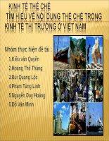 Báo cáo tiểu luận kinh tế thể chế: Tìm hiểu về nội dung thể chế kinh tế thị trường ở Việt Nam doc