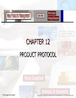 New Products Management - CHAPTER 12 PRODUCT PROTOCOL pps