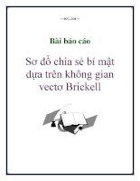 Bài báo cáo: Sơ đồ chia sẻ bí mật dựa trên không gian vectơ Brickell pdf