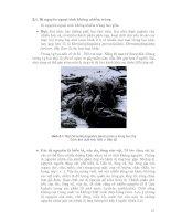 Nội bệnh lý part 3 pdf