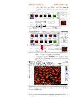 Quá trình hình thành giáo trình giới thiệu về softimage và phương pháp sử dụng p6 pptx