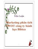 Tiểu luận: Marketing phân tích SWOT công ty bánh kẹo Bibica ppsx