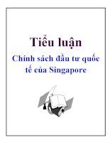 Tiểu luận: Chính sách đầu tư quốc tế của Singapore potx