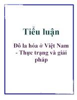 Tiểu luận: Đô la hóa ở Việt Nam - Thực trạng và giải pháp pdf