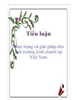 Tiểu luận: Thực trạng và giải pháp cho môi trường kinh doanh tại Việt Nam ppsx