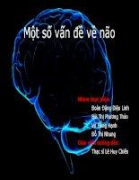 Tiểu luận: Một số vấn đề về não potx