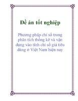 Luận văn : Phương pháp chỉ số trong phân tích thống kê và vận dụng vào tính chỉ số giá tiêu dùng ở Việt Nam hiện nay pps