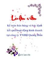 Luận văn: Kế toán bán hàng và xác định kết quả hoạt động kinh doanh tại công ty TNHH Quảng Điền pot