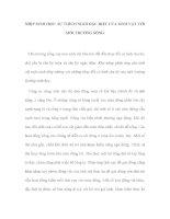 NHỊP SINH HỌC: SỰ THÍCH NGHI ĐẶC BIỆT CỦA SINH VẬT VỚI MÔI TRƯỜNG SỐNG pot