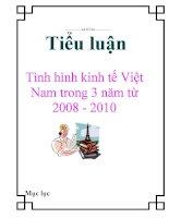 Tiểu luận: Tình hình kinh tế Việt Nam trong 3 năm từ 2008 - 2010 pdf
