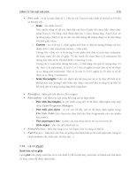 Hướng dẫn vẽ kỹ thuật trên AutoCad một cách đơn giản phần 10 doc