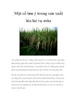 Một số lưu ý trong sản xuất lúa lai vụ mùa potx