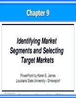 Chapter 9 - Identifying Market Segments and Selecting Target Markets doc