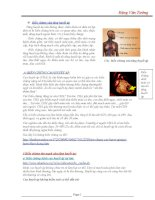 Chế độ dinh dưỡng cho người cao huyết áp pdf