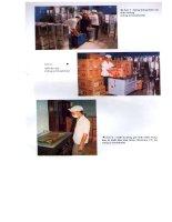 Hạt điều - Sản xuất và chế biến part 5 ppt