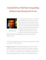 Cam kết hỗ trợ Việt Nam trong phòng chống tai nạn thương tích trẻ em doc