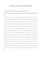 Tiểu luận : Văn hóa Việt Nam thời kì hội nhập 2 pdf