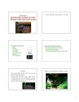 Bài giảng Nguyên lý thiết kế cảnh quan  Chương 3: Những đối tượng cơ bản trong thiết kế cảnh quan
