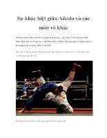 Sự khác biệt giữa Aikido và các môn võ khác docx