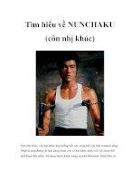 Tìm hiểu về NUNCHAKU (côn nhị khúc) doc