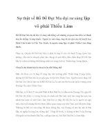 Sự thật về Bồ Đề Đạt Ma đại sư sáng lập võ phái Thiếu Lâm pptx