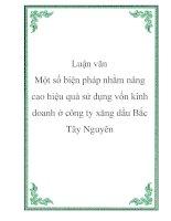 Luận văn - Phân tích tình hình tài chính công ty cổ phần Sao Việt pdf