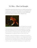 Võ Mèo – The Cat Kungfu potx