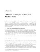 Chapter 3 - General Principles of the IMS Architecture pot