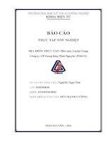 Báo cáo thực tập tốt nghiệp tại nhà máy luyện gang công ty CP gang thép thái nguyên (TISCO)