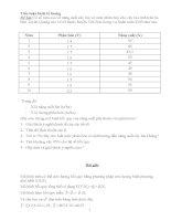 Tiểu luận kinh tế lượng pdf