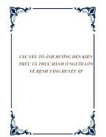 CÁC YẾU TỐ ẢNH HƯỞNG ĐẾN KIẾN THỨC VÀ THỰC HÀNH Ở NGƯỜI LỚN VỀ BỆNH TĂNG HUYẾT ÁP docx