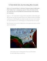 Lễ hội khinh khí cầu bên dòng Rio Grande pot