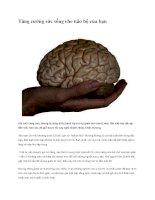 Tăng cường sức sống cho não bộ của bạn potx