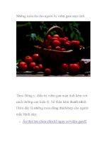 Những món ăn cho người bị viêm gan mạn tính ppsx