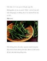 Cẩn thận với 6 rau quả có thể gây ngộ độc Không phải cứ rau củ quả là ppsx
