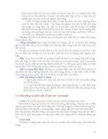 ĐỊA CHẤT DẦU KHÍ KHU VỰC part 2 potx