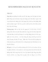 BỆNH PHÌNH ĐỘNG MẠCH CHỦ BỤNG DƯỚI pot