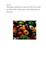 hoạt động xuất khẩu rau quả của việt nam sau khi gia nhập wto  thực trạng và giải pháp nâng cao hiệu quả