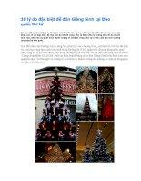 10 lý do đặc biệt để đón Giáng Sinh tại Đảo quốc Sư tử pptx