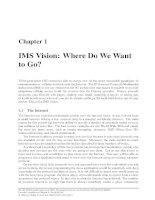 Chapter 1 - IMS Vision: Where Do We Want to Go? ppsx