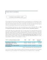 Báo cáo: Phân tích dòng tiền pps