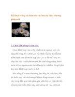 Kỹ thuật trồng và chăm sóc cây hoa cúc theo phương pháp mới ppsx